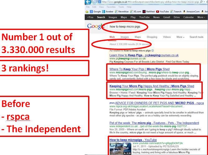 sales page pig 2 google