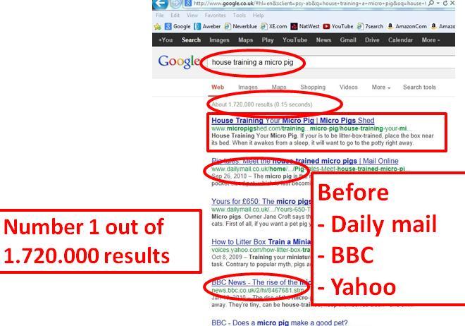 sales page pig google